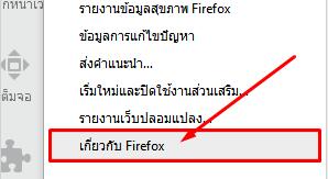 Firefox Update 3